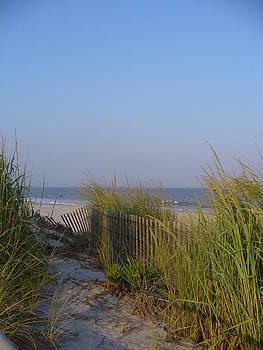 Brigantine Beach vert by Jaime  Manning