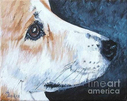 Bright Eyes by Ann Becker