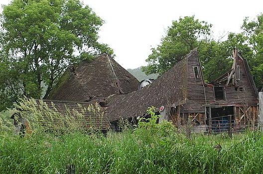 Broken Down Barn by Wanda Jesfield