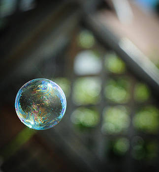 Bubble  by Tamara Hamula