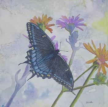 Butterly by Robert Decker