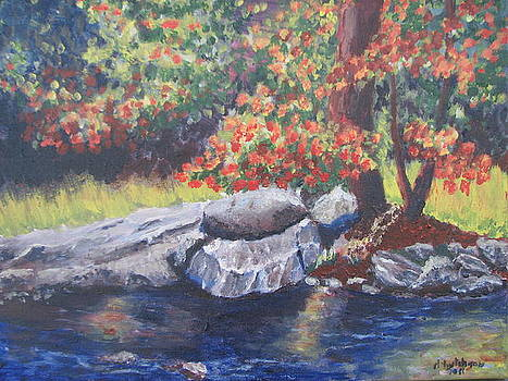 By the Creek by Don Hutchison
