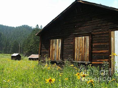 Cabins and Wildflowers by Theresa Willingham