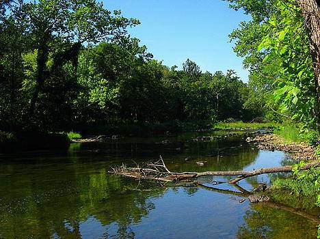 Cacapon River Near Berkeley Springs by Joyce Kimble Smith