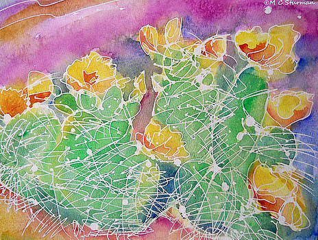 Cactus Color by M C Sturman
