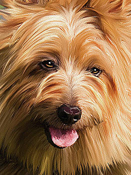 Cairn Westie by Michael Greenaway