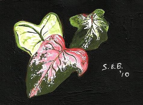 Caladiums by Susan Bromlow