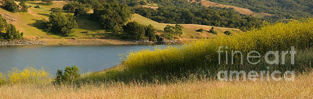 California Landscape Scenic by Matt Tilghman