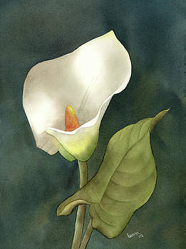 Calla Lily by Leona Jones