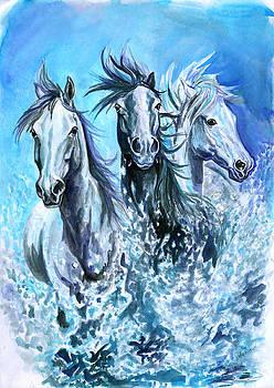 Camargue horses by Jana Goode