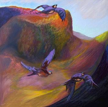 Canyon Flight by Monika Burnside