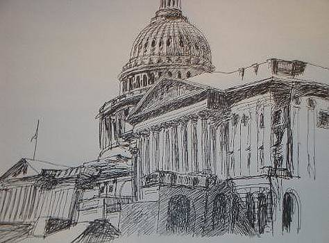 Capital Drawing by Tonia Darling