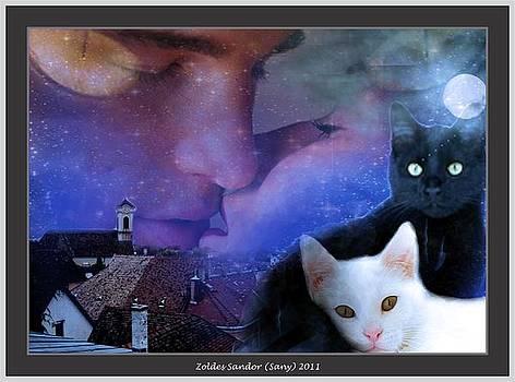 Cats by Zoldes Hampel Sandor
