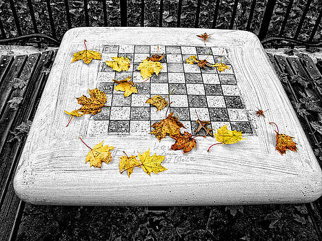 Checker Board by Bennie Reynolds