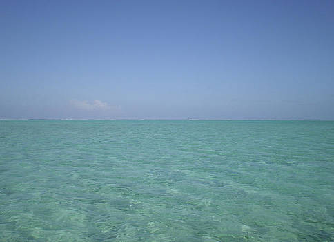 Clear Blue Water v Crystal Clear Sky by Paul Jessop