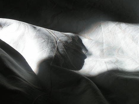 Cloth shadow 1 by Julie Lawrence