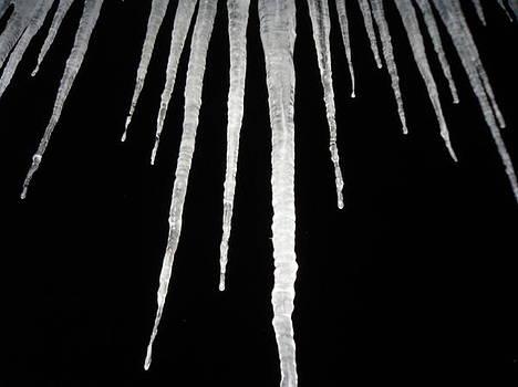 Cold Winter Night by Devon Stewart