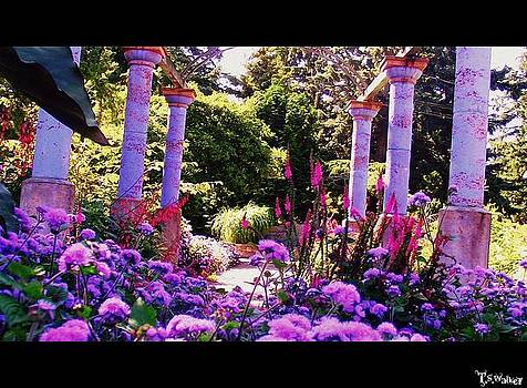Columns of flowers by Tennessee Walker