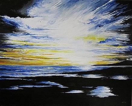 Cornish Sunburst by Terry Waites