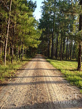Country road by Cindy Hudson