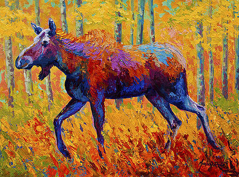 Cow Moose by Marion Rose