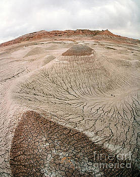 Cracked Earth by John  Fix