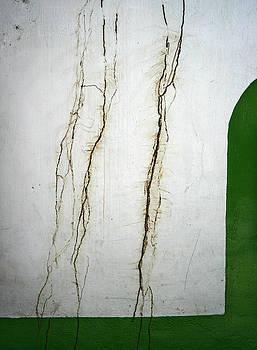 Cracks by Shane Rees