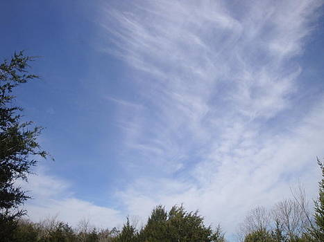 Crisscrossing Cirrus Clouds by Tonia Darling