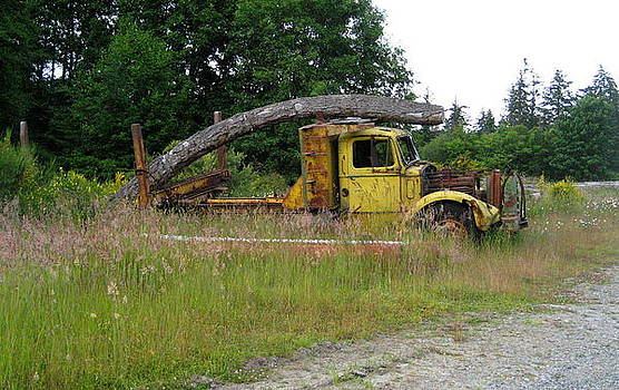 Crooked Load by Shawn Hegan