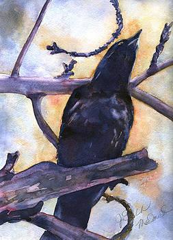 Crow Calling by Jo-ann Dziubek-MacDonald