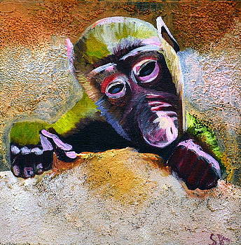 Cute Little Monkey by Sinclair Allen