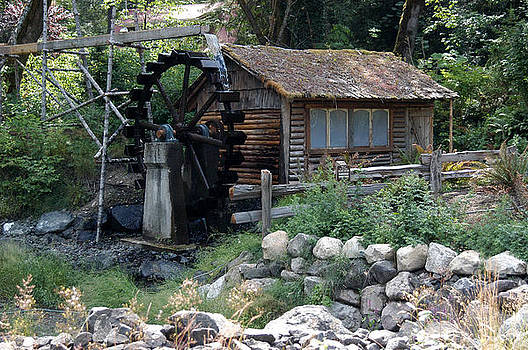 Dalby Water Wheel by Wanda Jesfield