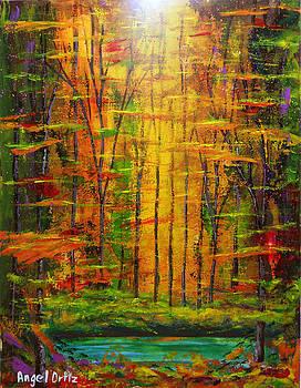 Dark forest by Angel Ortiz