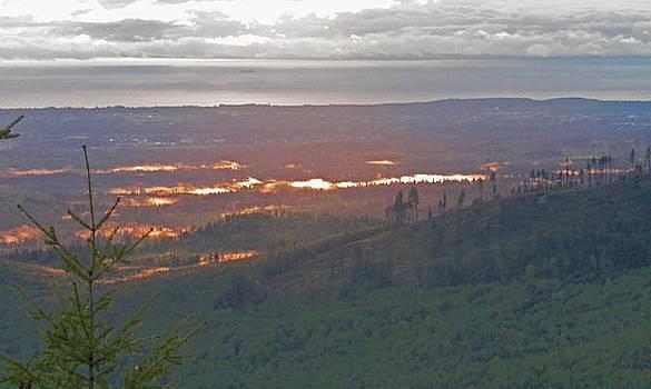 Dawn Fire by Seth Shotwell