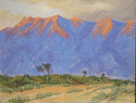 Desert Dawn by Reif Erickson