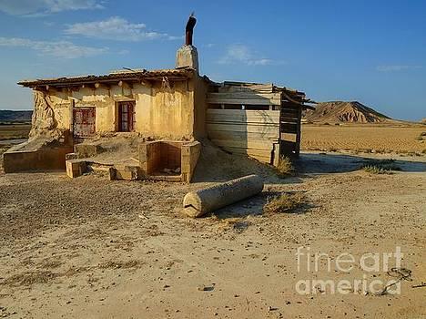 Desert Living by Alfredo Rodriguez