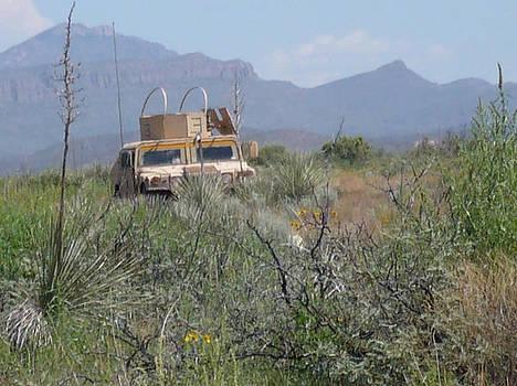 Desert Training by Thomas  MacPherson Jr