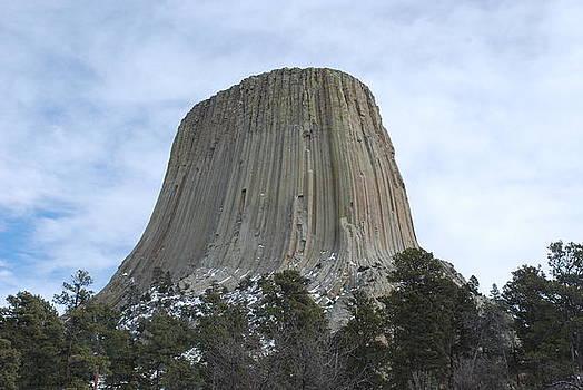 Devils Tower Wyoming by Wanda Jesfield