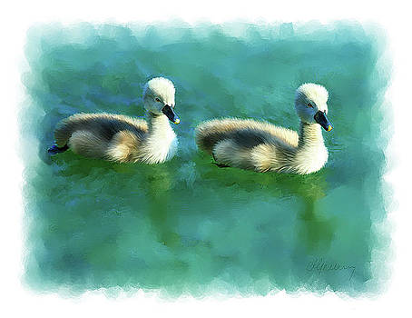 Double Ducklings by Michael Greenaway