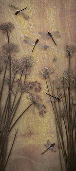 Dragonflies and Papyrus II by Antoinette Houtman