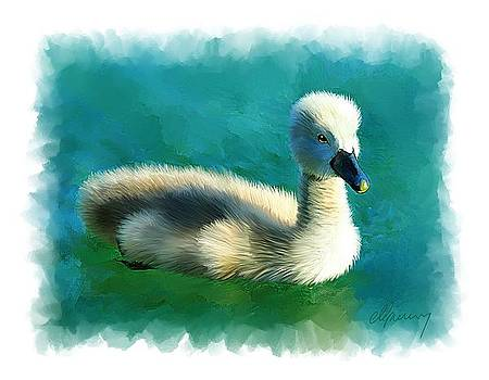 Duckling by Michael Greenaway