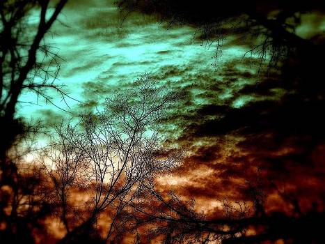 Dusk by Maria Scarfone