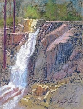 Eagle Falls by Reif Erickson