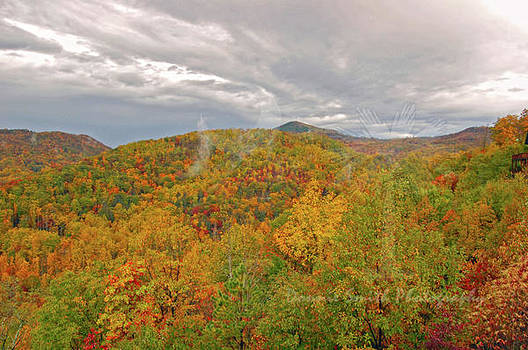 Early Fall by Donnie Smith