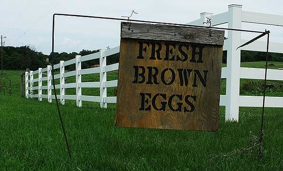 Eggs for Sale by Anna Villarreal Garbis