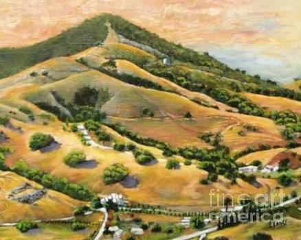 El Toro Hillside by Lorna Saiki