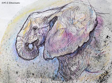 Elephant Profile by M C Sturman