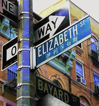 Elizabeth Street by Maria Scarfone