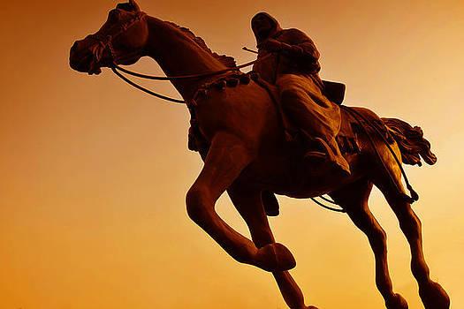 Equine by Farah Faizal