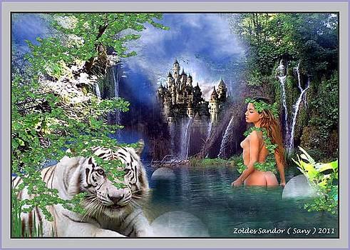 Fairy Tale  by Zoldes Hampel Sandor